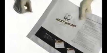 UPS - Next Day Air PAK
